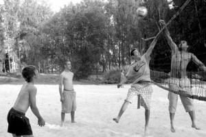 Volejbols