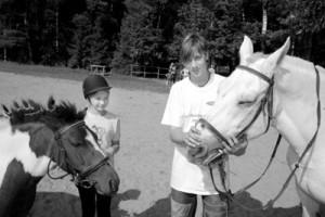 Kāds zirgs