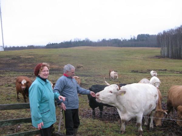 """SAIMNIEKUS PAZĪST. """"Zundu"""" saimnieki Dzintra un Jānis Petrovski pie sava ganāmpulka. FOTO: Sarmīte Feldmane"""
